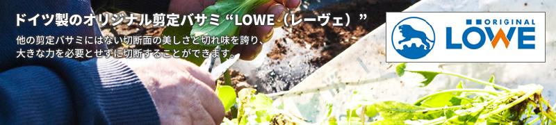 レーヴェ(LOWE)